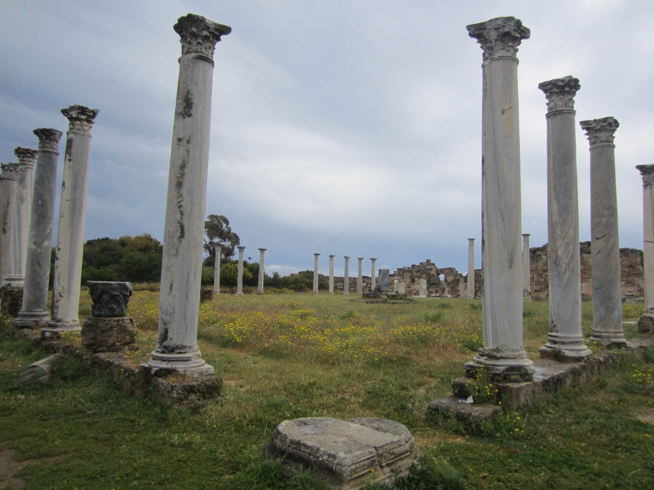 The ruins of the city of Salamis