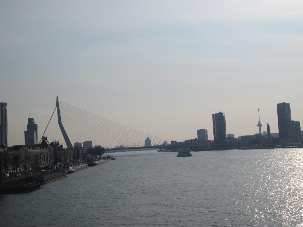 Rotterdam's Erasmusbrug