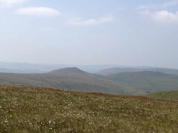 The peat moor of Kinder Scout