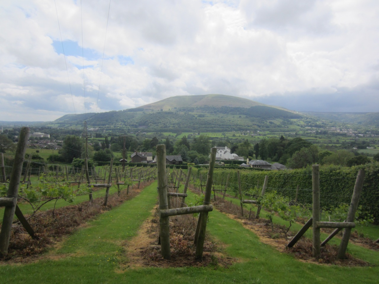 Abergavenny: wine tasting and mountain walks