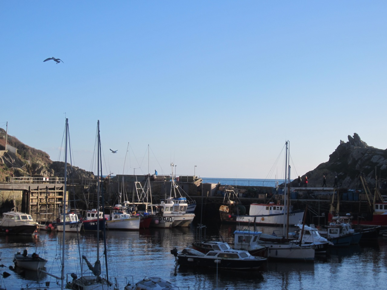 Cornish daytrips: Polperro