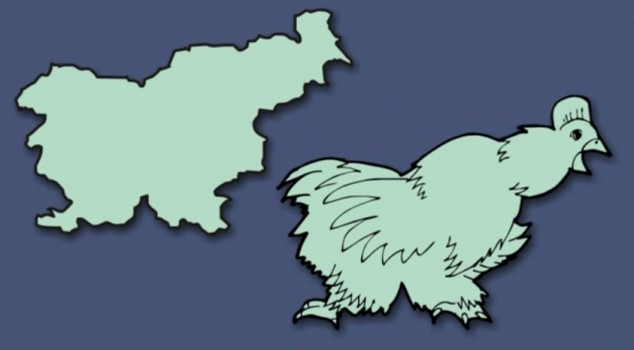 Slovenia or a chicken? Photo credit www.broadsheet.ie
