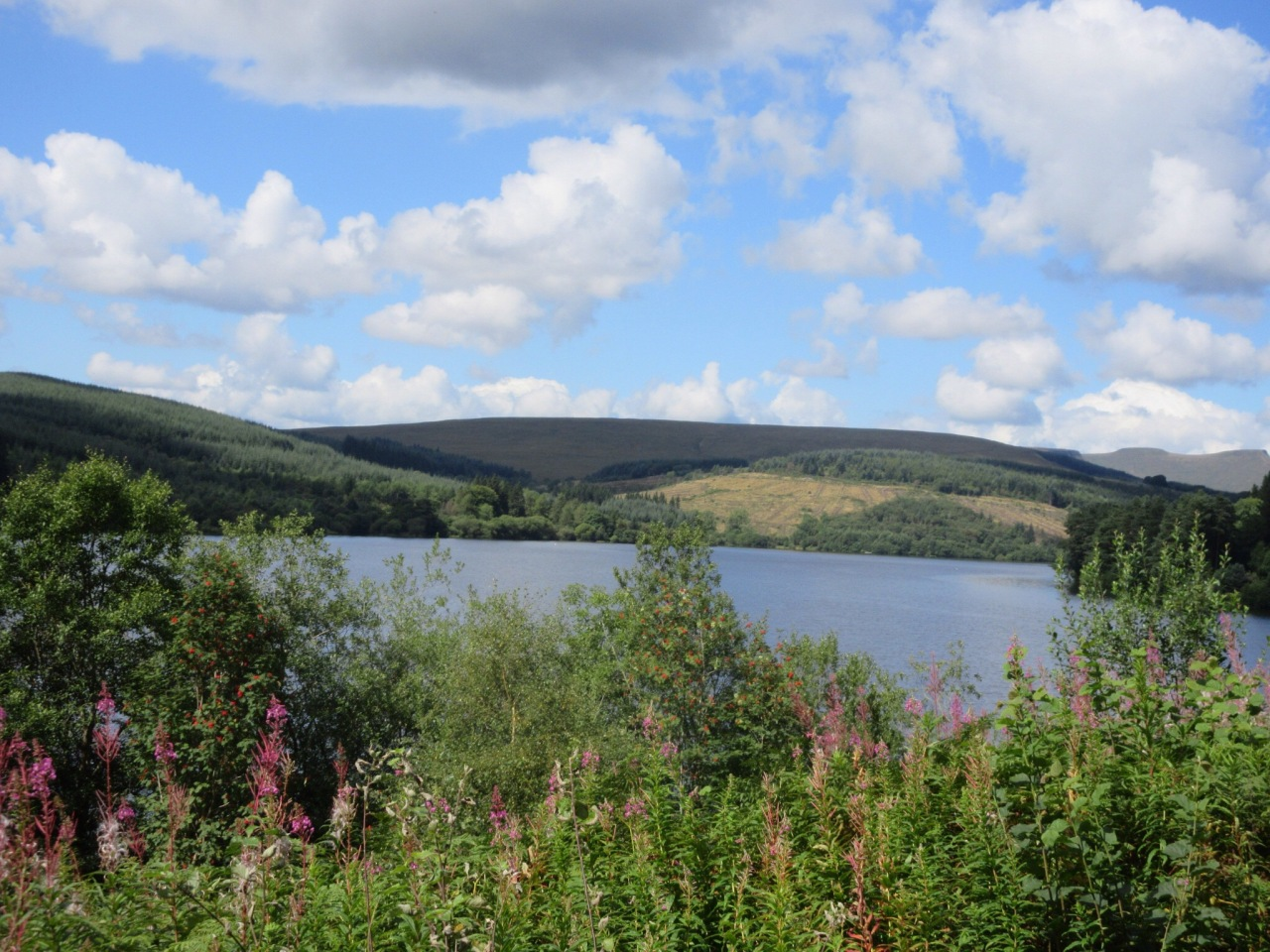 The Brecon Mountain Railway: the easy way to the BreconBeacons